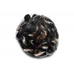 Fekete kagyló (pucolt)